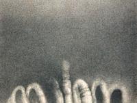 paysage-organique-crayon-sur-papier-23x18cm-1978