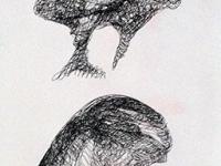 cosimo-cavallo-2019-untitled-pen-on-paper-cm-638x292_2