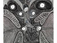 les-yeux-de-lombre