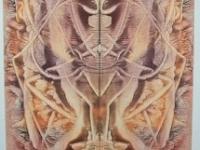 collection-sotta-lambassadeur-53x120cm