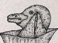 Accueil Buytenko